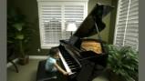 Vorschau: Herkules Piano- und Kleintransporte