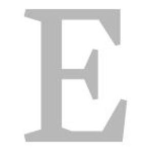 Logo Elsner Immobilien