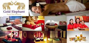 Logo Gold Elephant Royal Thai Wellness
