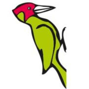 Logo Zimmerei Grünspecht e.G.